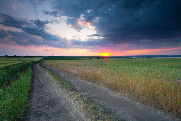 Artem Nosenko: road grass field sun clouds trees nature